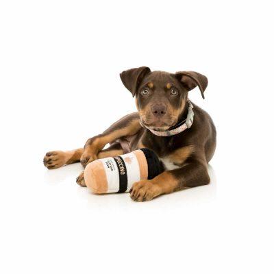 fuzzyard-puppuccino-with-dog